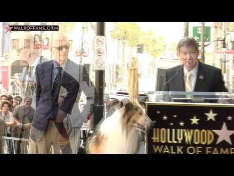 Bill Geist Honored with Hollywood Walk of Fame Star