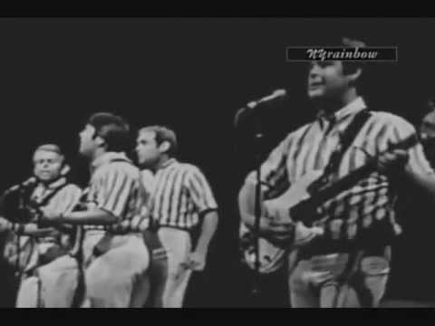 The Beach Boys: Please Let Me Wonder (Live - 1965)