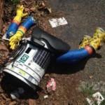 hitchbot murdered